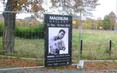 magnum2