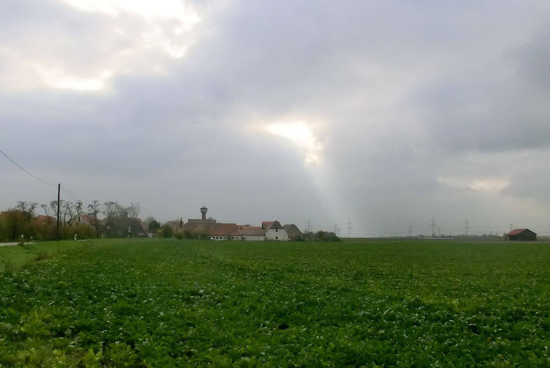 strassenheim2