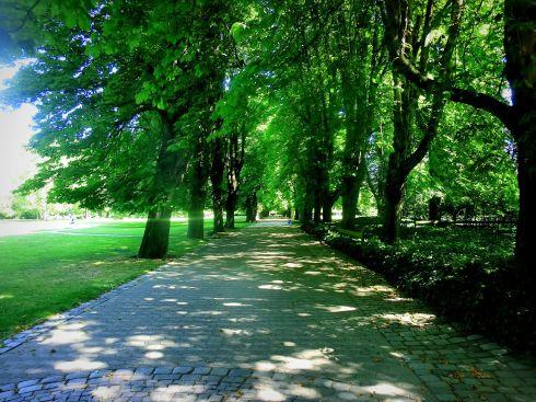 Herzogenriedpark3