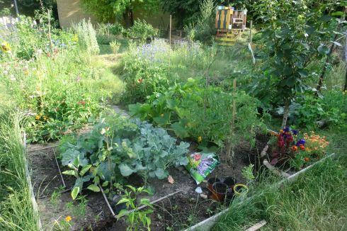 urban-gardening3