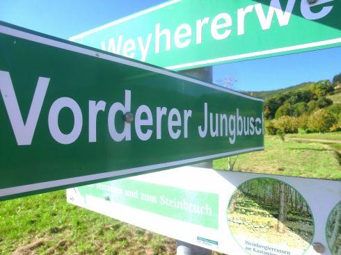 V-Jungbusch